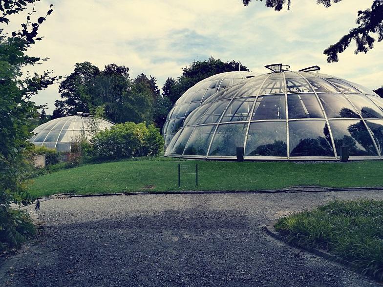 Ogród w Zurychu